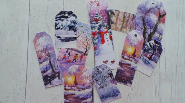 A selection of bright wintery trees
